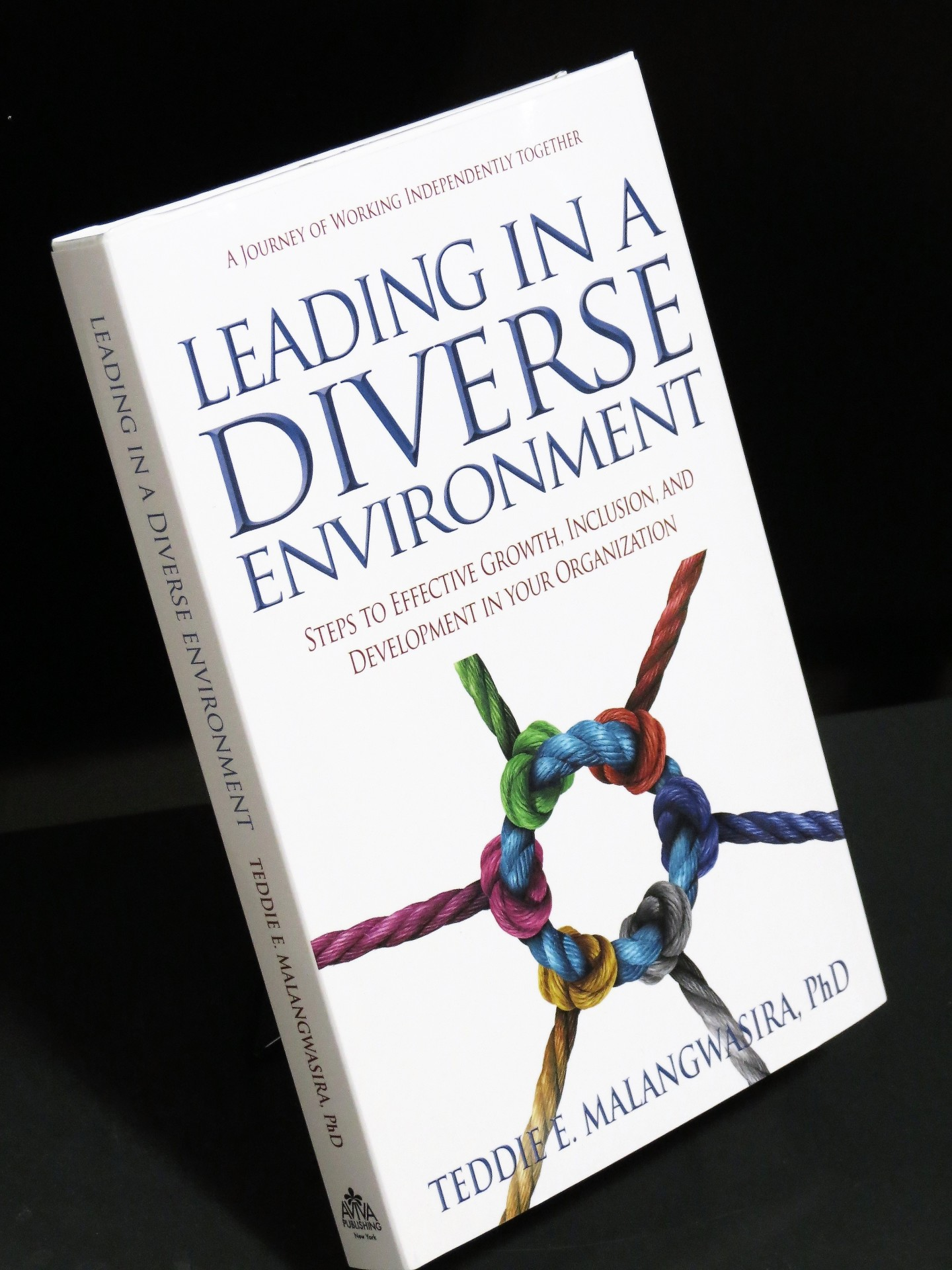 Leading In A Diverse Environment - Book Release
