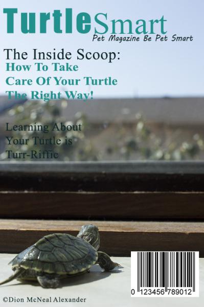 Creative Project: Animal Magazine Cover