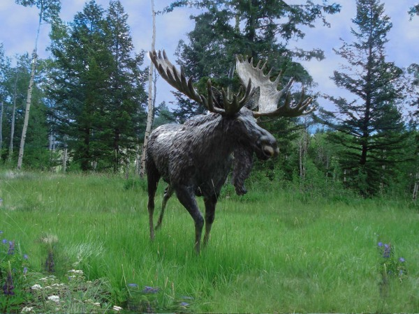 Bronze Moose, Outdoor Sculpture
