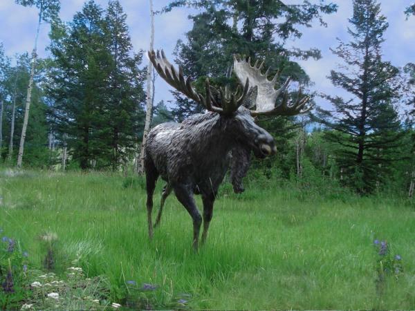 Bronze Moose, Outdoor Sculpture