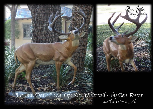 Bronze Deer, Whitetail  buck, outdoor sculpture