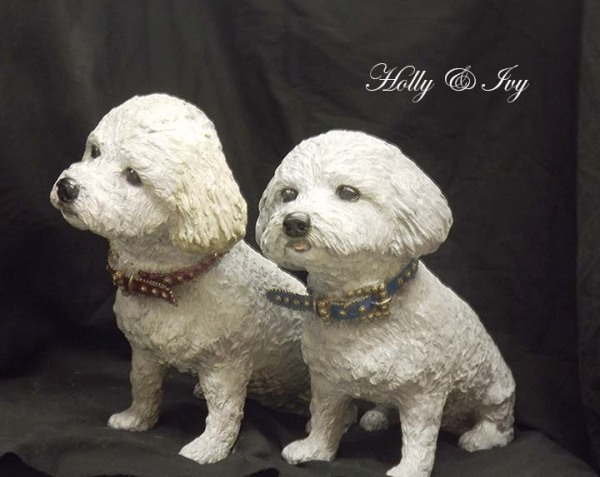 Bronze Dog, Bichon Poodles