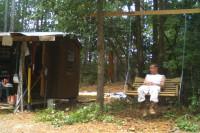 Cedar Cabin- The Swing