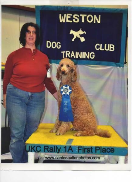 Ginger UKC RO1 1st Place