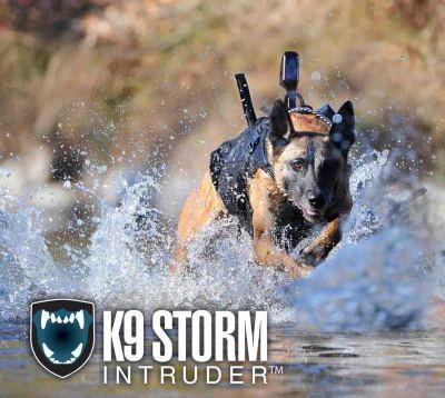 k9 bullet proof vest
