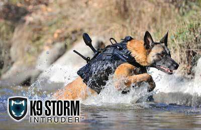 Dog jumping through water with a K9 camera system