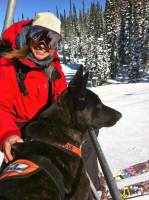 Dog on ski lift