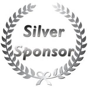 Silver $500