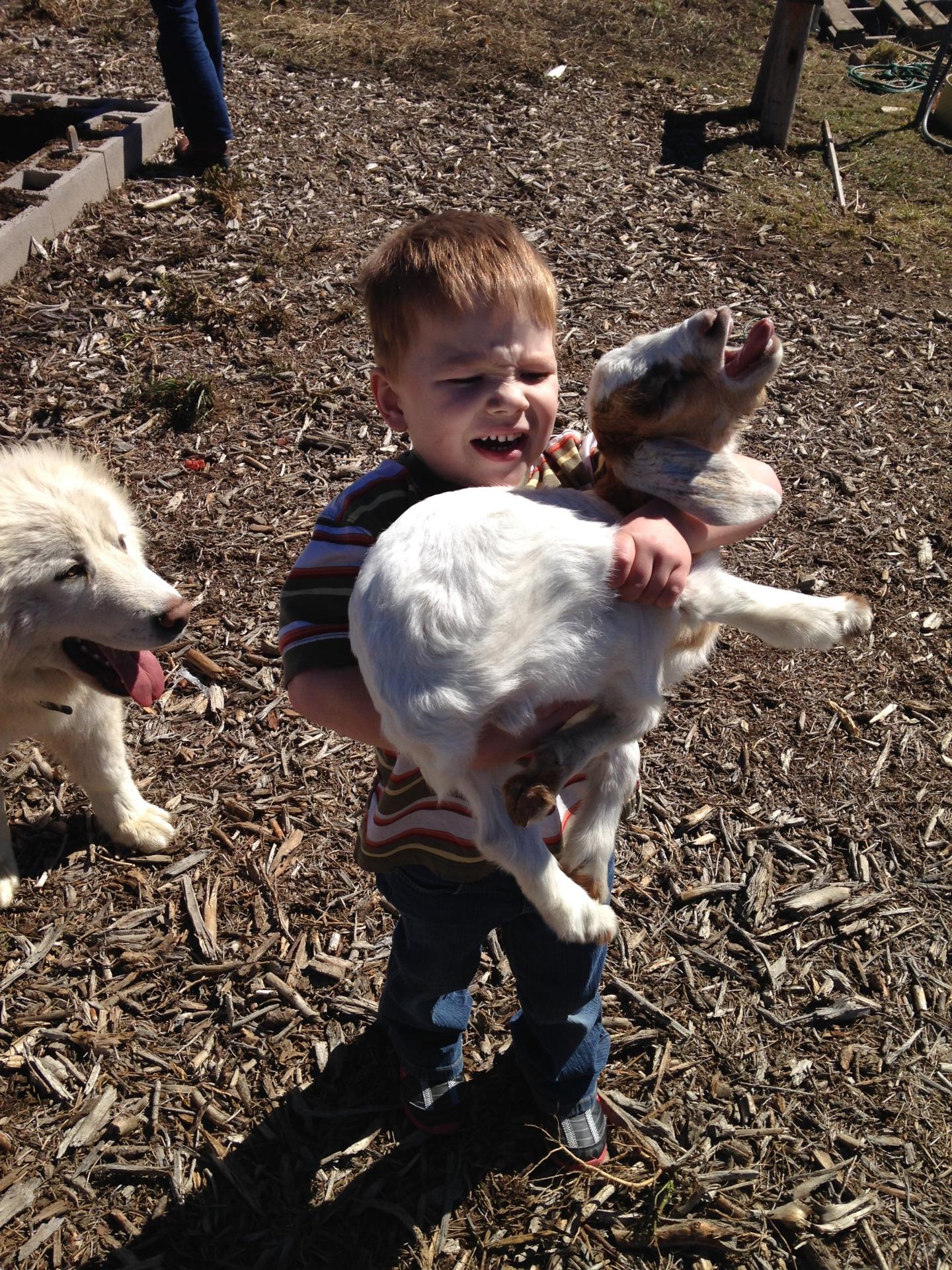 Grandson and tolerant buck kid