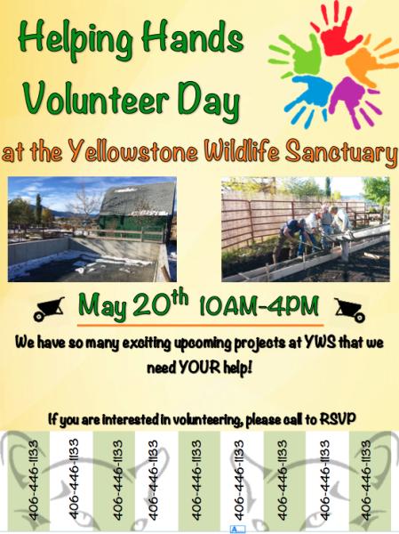 Helping Hands Volunteer Day
