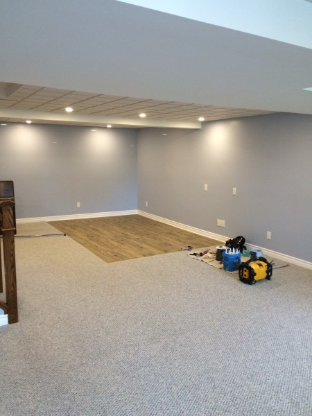 Complete Finished Basement