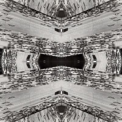 Organicidade, 2010. 80 x 80 cm. Fotomontagem / Photomontage
