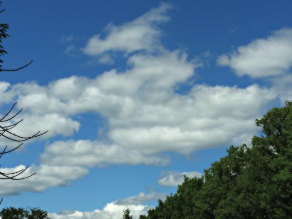 The August Sky