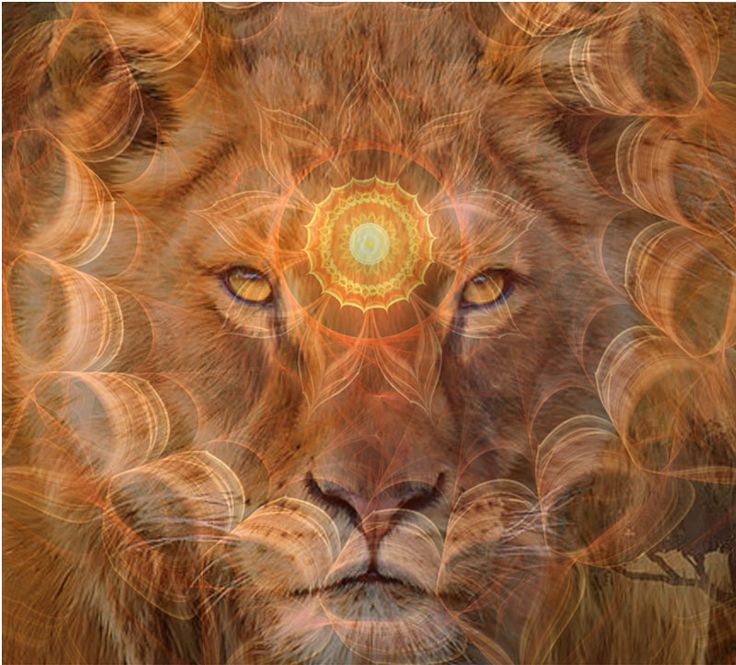 Super New Moon in Leo - Heart Consciousness