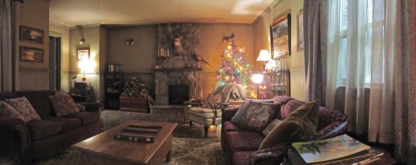 Cabin - Living Room