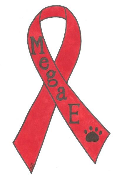 Mega-Esophagus Awareness