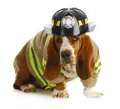 Pet Fire Safety Tips