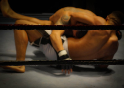 Brazilian Jiu-jits, kickboxing, Mauy Thai, MMA at Ronin MMA