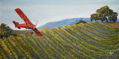 wine country, curtis robin, landscape, art, vintage aircraft