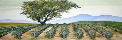 wine country, vineyard, art, oak