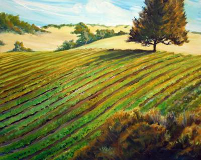 wine country, west, art, vineyard