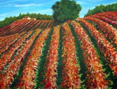 vineyard, wine country, art