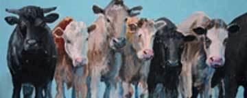 Cows in a Que