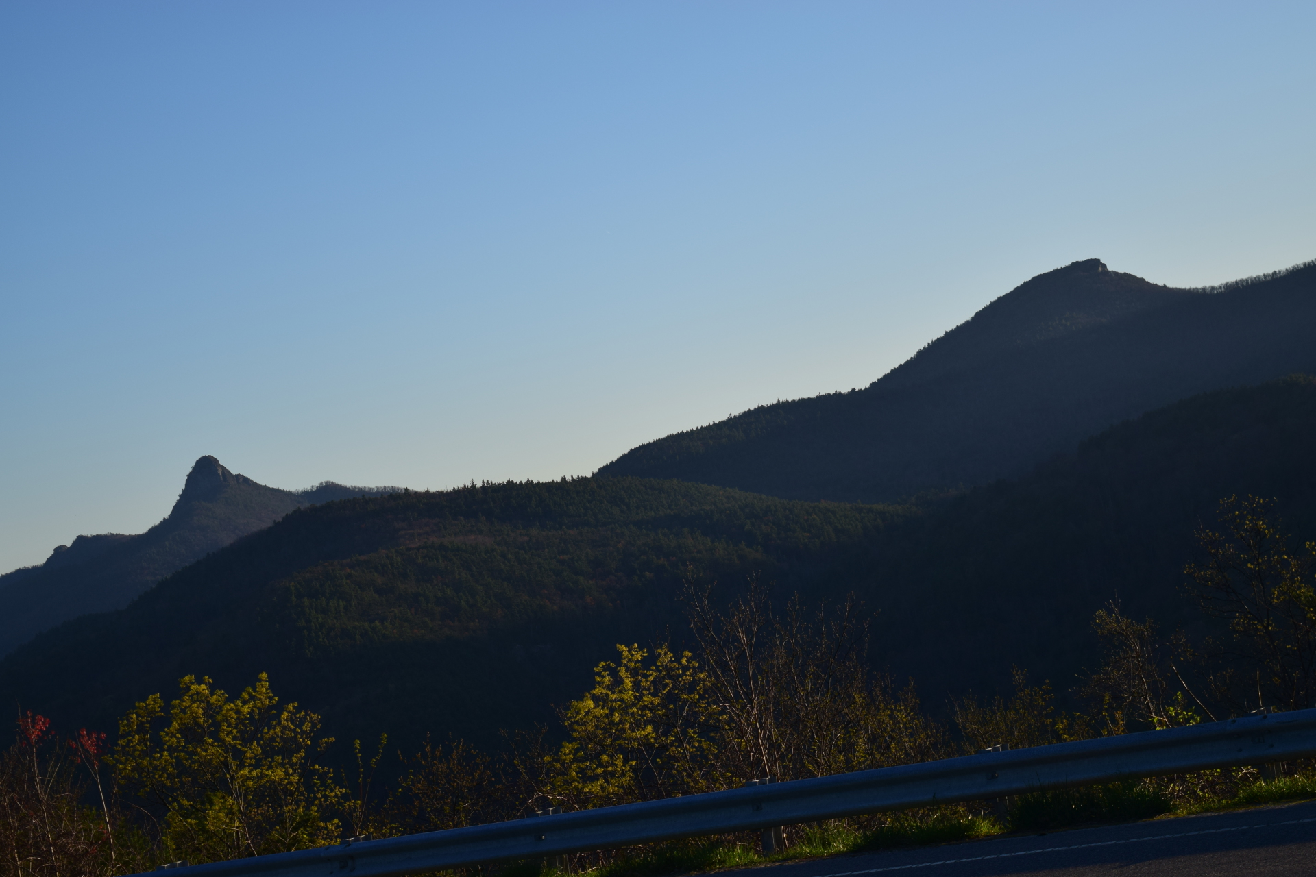 Pisgah National Forest, NC