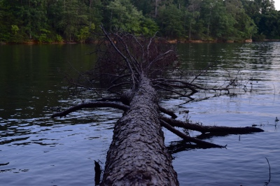 Lake Norman - Mooresville, NC