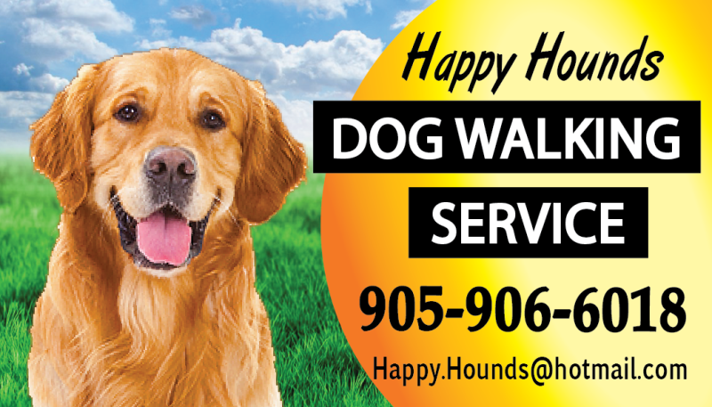 Welcome happyhoundshamiltoncom for Professional dog walker rates