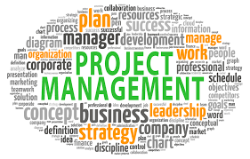 PROJECT MANAGEMENT IN ENERGY PROJECTS