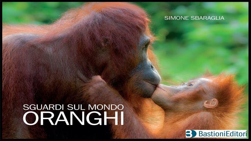 Sguardi sul Mondo - Oranghi