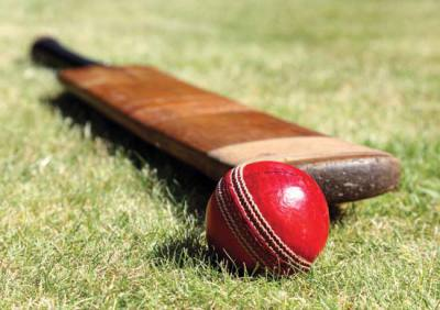 CRICKET CLUB BOWLED OVER BY 'GREEN GIFT'