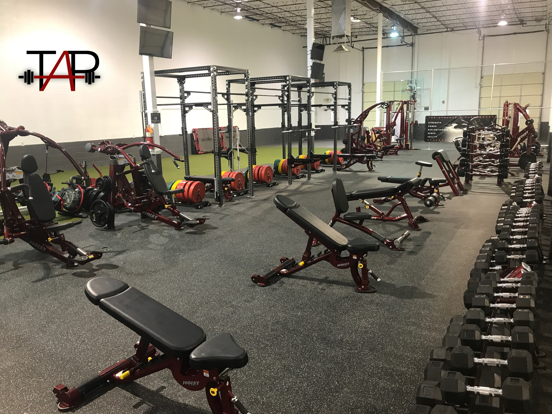 Free Weight Area East