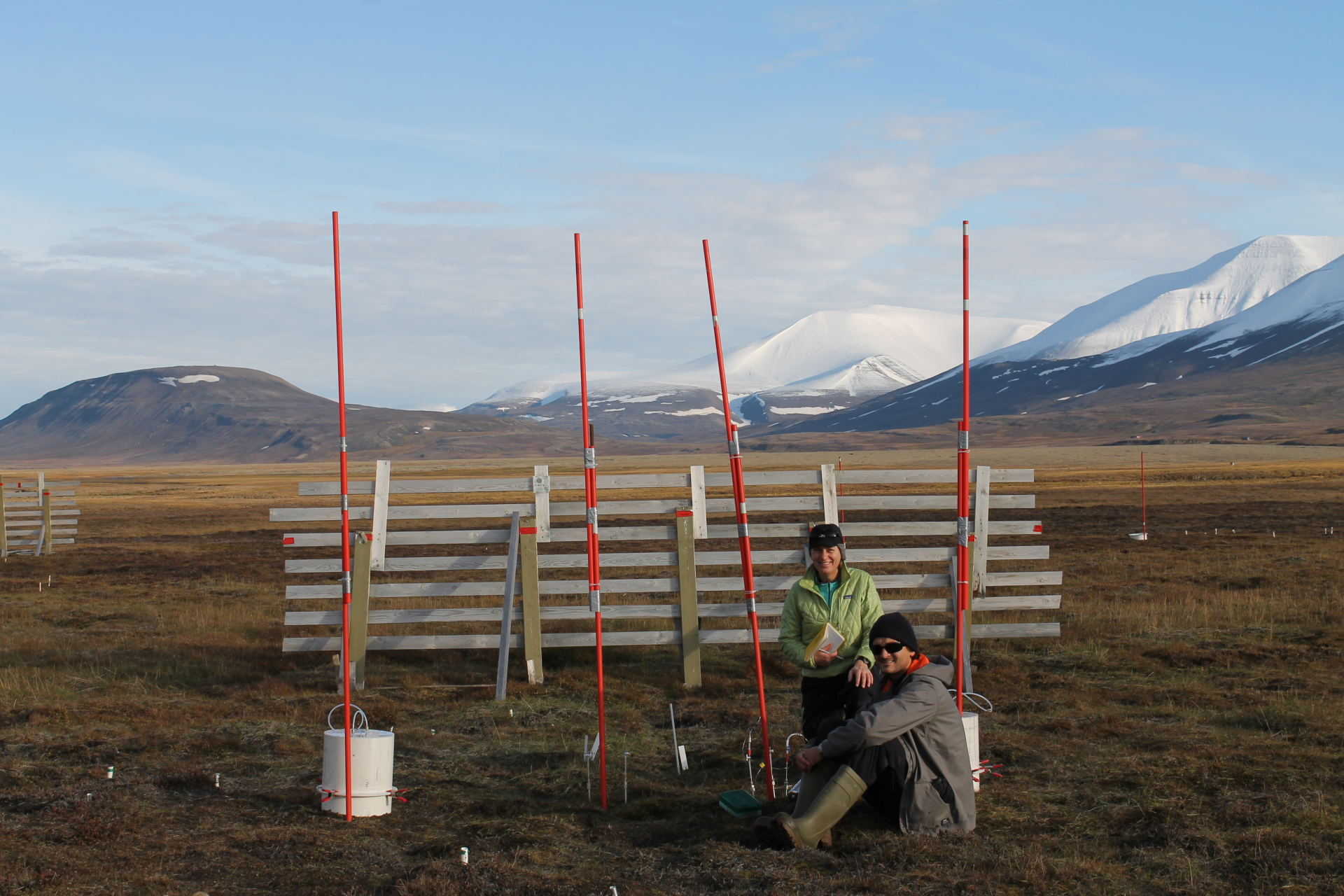 The snowfence experiment