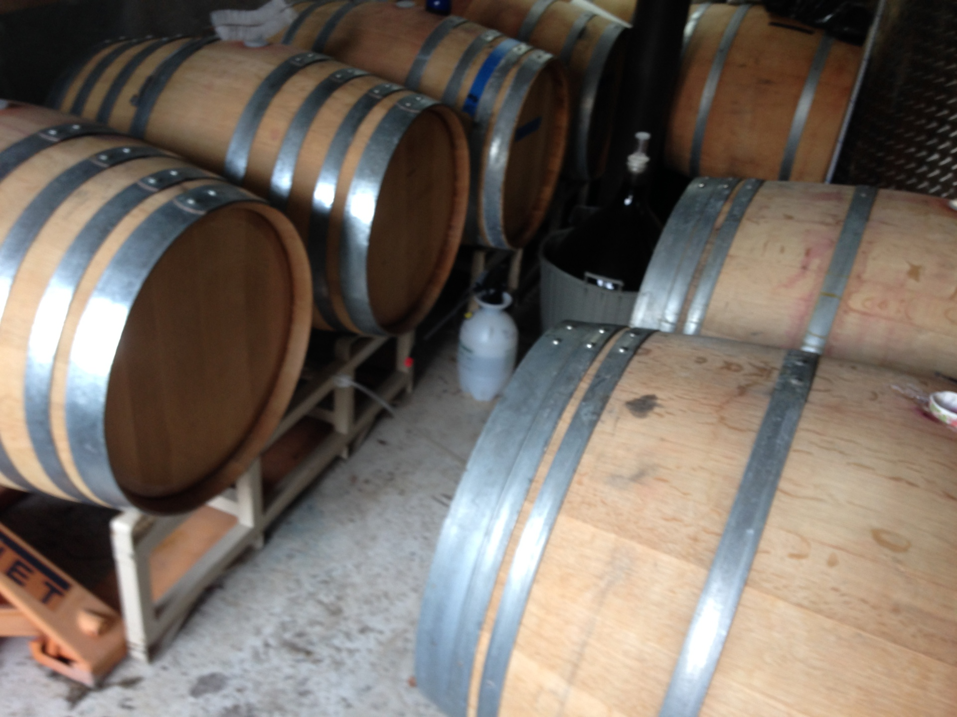 Aging process: it is the magic that oak brings to our wine