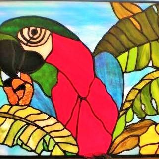 Coy Parrot