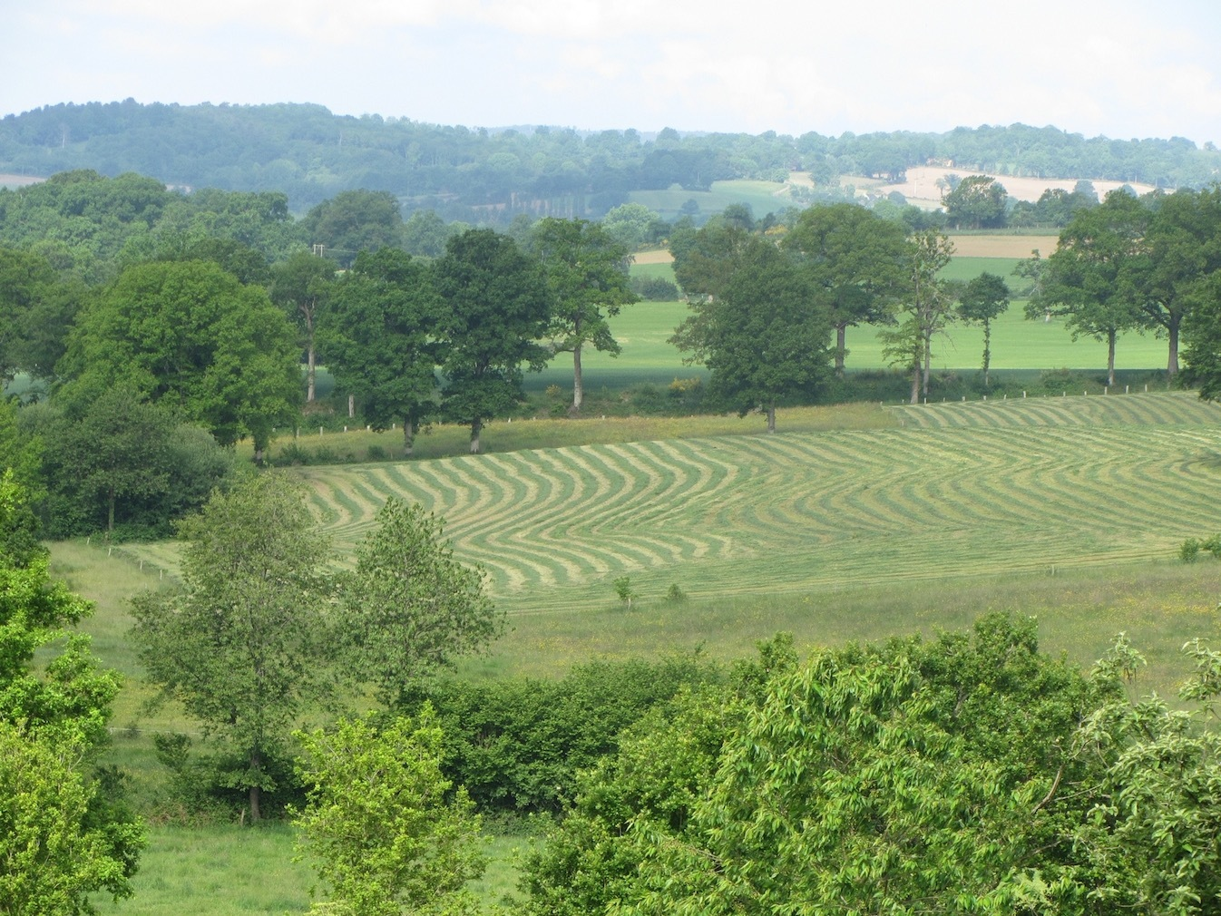Le Choisel - gardens - Normandy - France