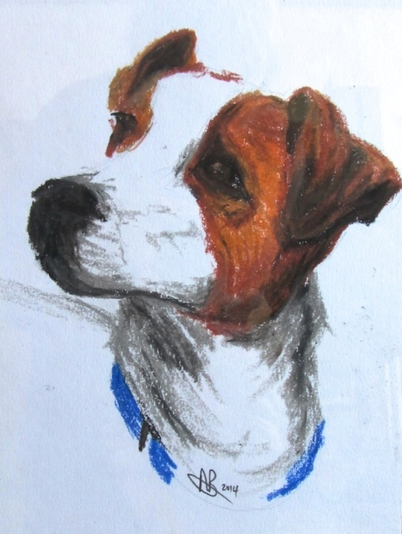 Angela Birchall drawing dog portrait