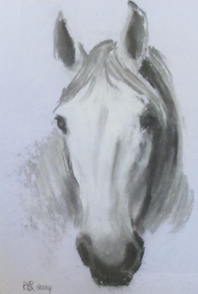 Angela Birchall painting horse portrait