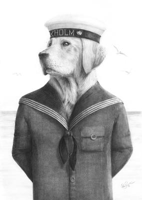 Sailor golden graphite drawing by Per Svanström