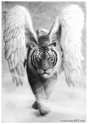 Tiger Wings by Per Svanström