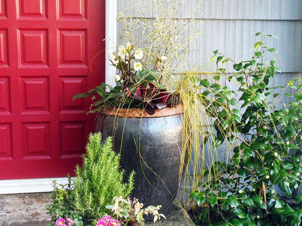 entryway containers, gardening, gardens, front door gardening