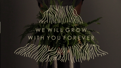 We Will Grow With You Forever Cannot Find What is Already Present