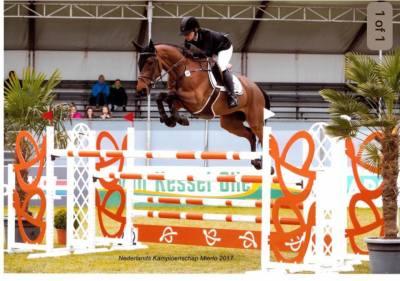 Dutch Senior Championships