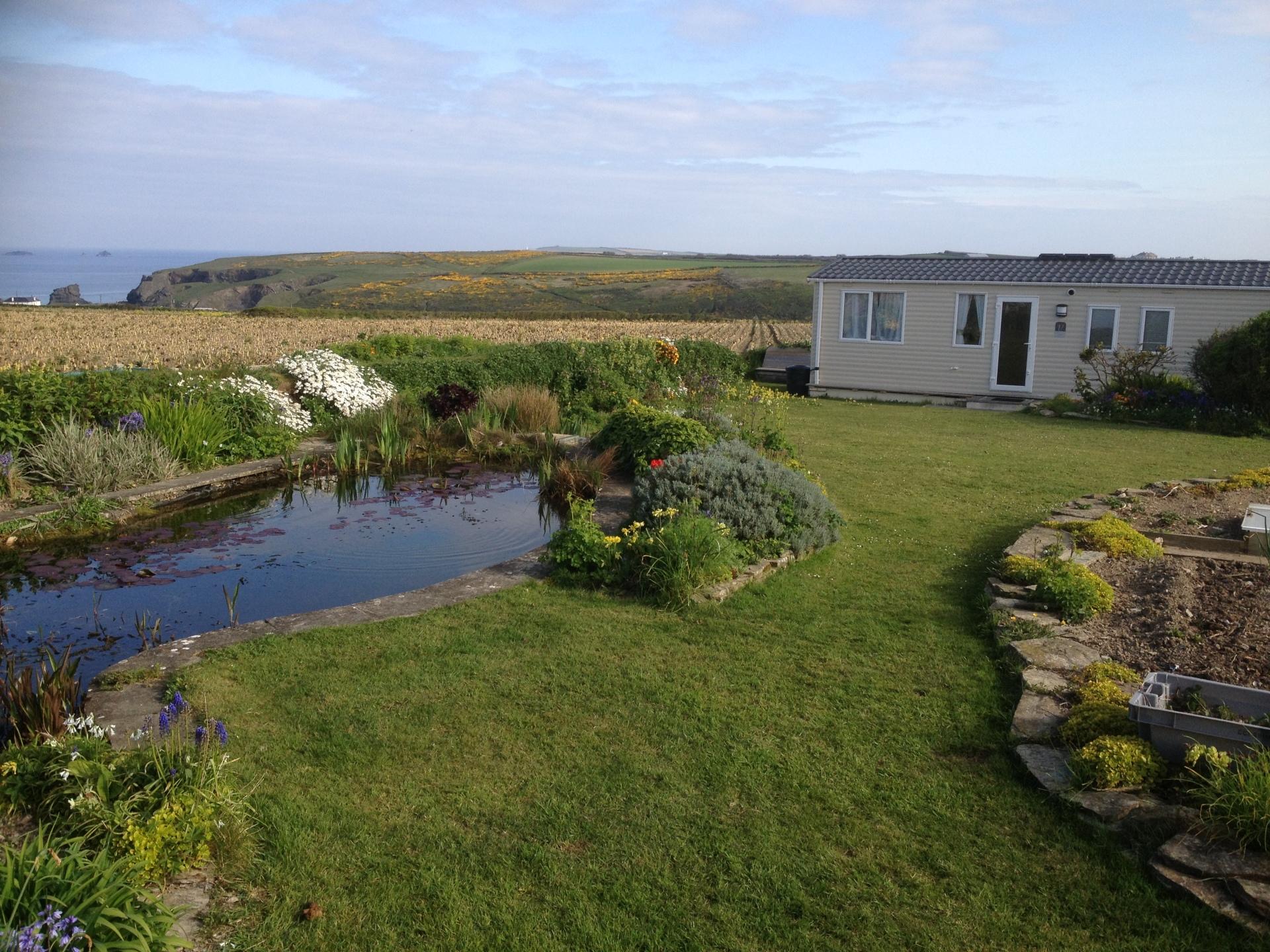 Golden Burn Cottage and Garden