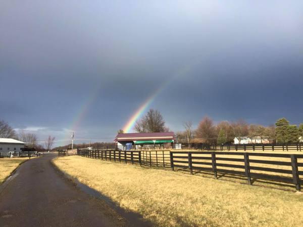 Rainbows at Stealaway Inc