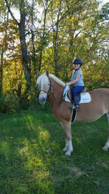 Horseback Riding in Central Ohio