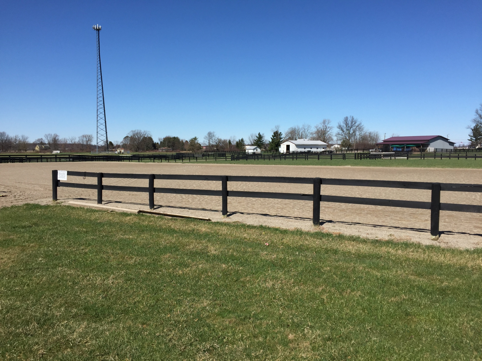 Our lovely outdoor riding arena
