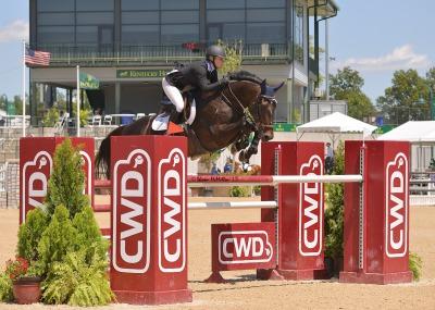 sale horses central ohio